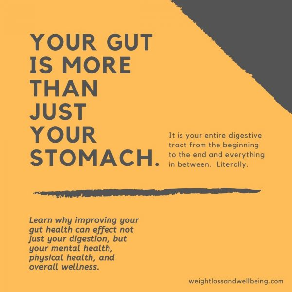 what is gut health